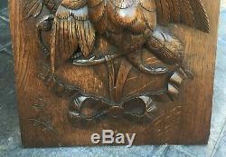 Antique Carved Oak Panel Plaque Roc Bird High Relief Foliate QTY Large & Unusual