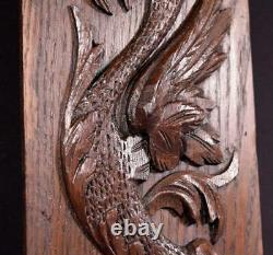 Antique French Carved Oak Wood Panel with Dragon/Griffin Salvage