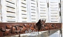 Architectural griffin scroll leaves Antique french carved wood crest panel trim