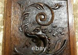 Female dragon fire chimera carving panel Antique french architectural salvage