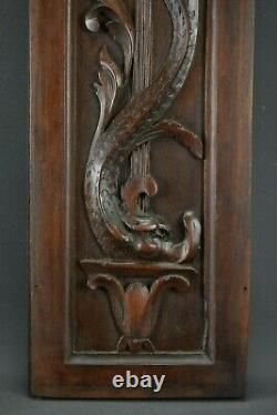 French Antique Renaissance Style Carved Wall Panel Door Dolphin 2