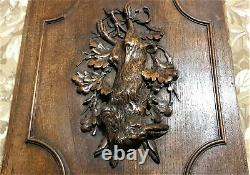 Hunting trophy decorative carving panel Antique french architectural salvage