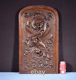 Large French Antique Deep Carved Panel Door Solid Walnut Wood Griffin/Chimera