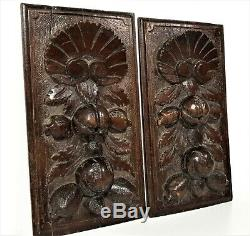 Pair farmhouse fruit shell wood carving panel antique french salvaged ornament