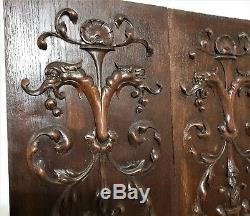 Pair griffin scroll leaves panel Antique french carved wood salvaged paneling