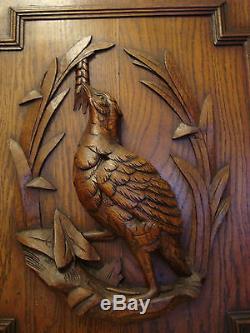 SUPERB ANTIQUE CARVED WOODEN BIRD PANEL DOOR FOR DECORATION 1900's GAME BIRD