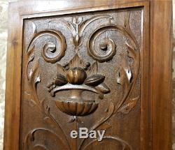 Scroll leaves wood carving panel Antique french gothic architectural salvage